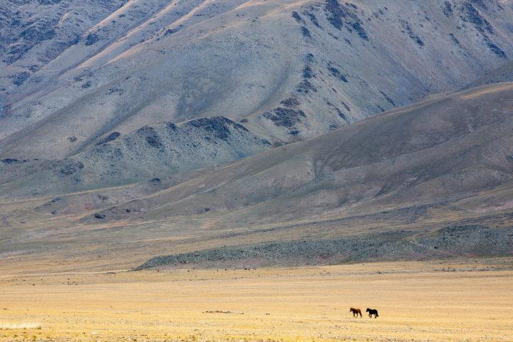 2. Монголия