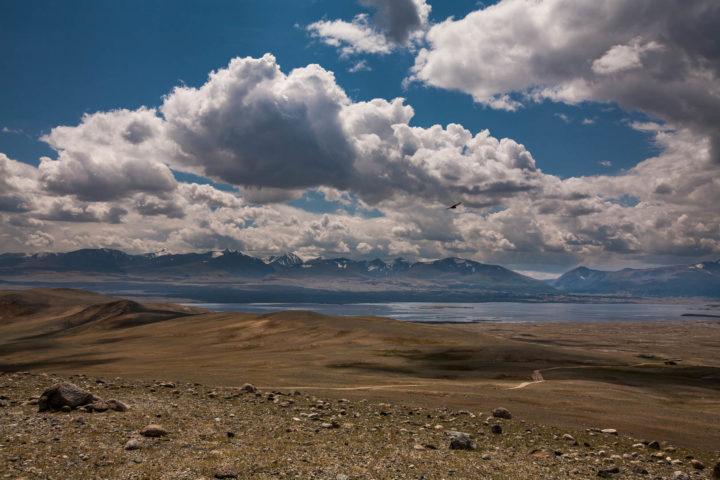 8. Пейзажи Монголии