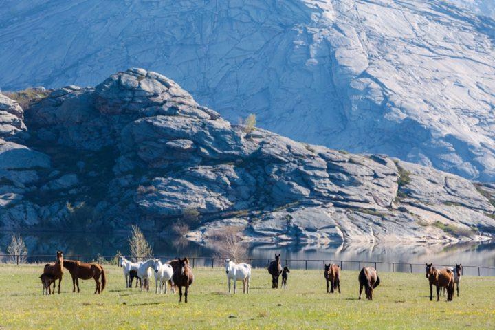2. Кони и Сибинские озера