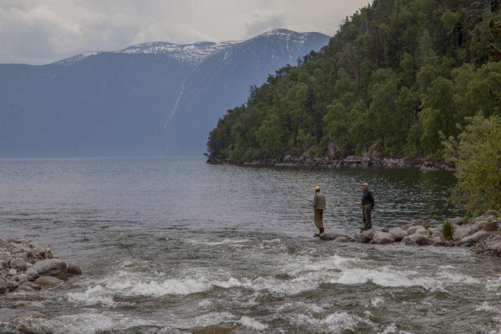 4. В озеро впадает много рек