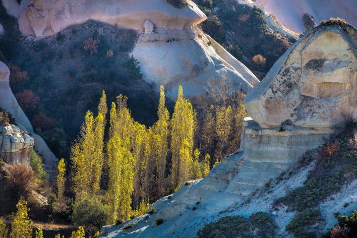 4. долина Zemi