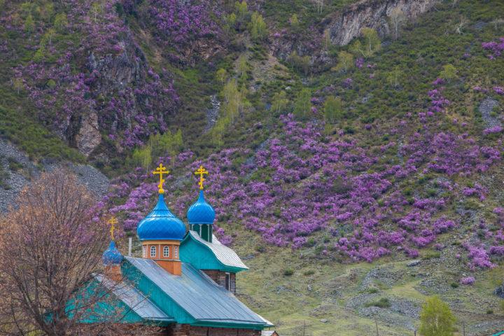 Церковь и маральник