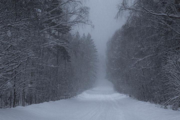 1. Зимняя дорога