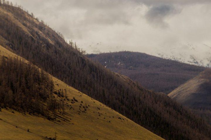 1. Северо Чуйский хребет