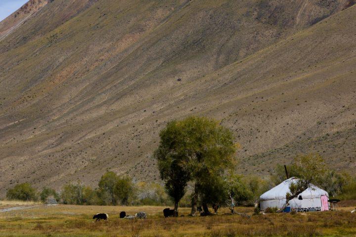 2. Монгольская юрта