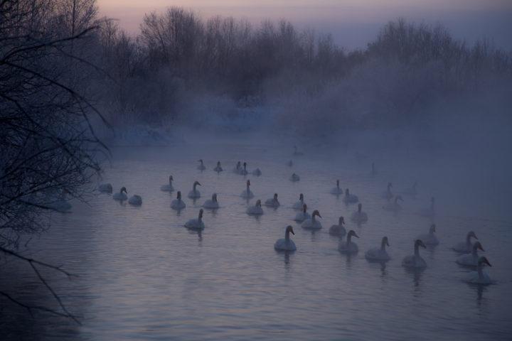 1. Морозное утро