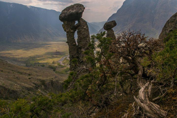2. Каменные грибы. Алтай