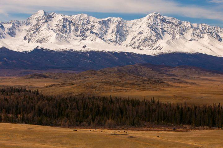5. Северо-Чуйский хребет. Алтай